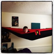 Husband fulfilled kiddo's dream, hammock in bedroom