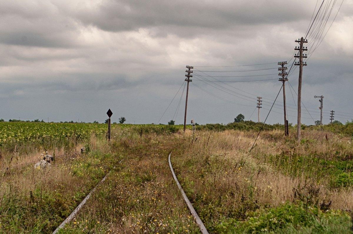 I binari inerbiti della linea Lovrin – Timisoara, nell'ovest del paese.