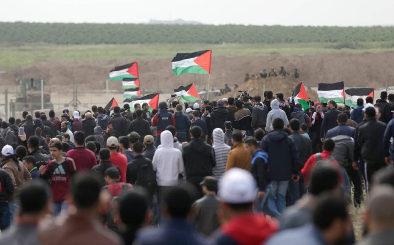 <em>Hello, World!</em> <br />La strage di Gaza
