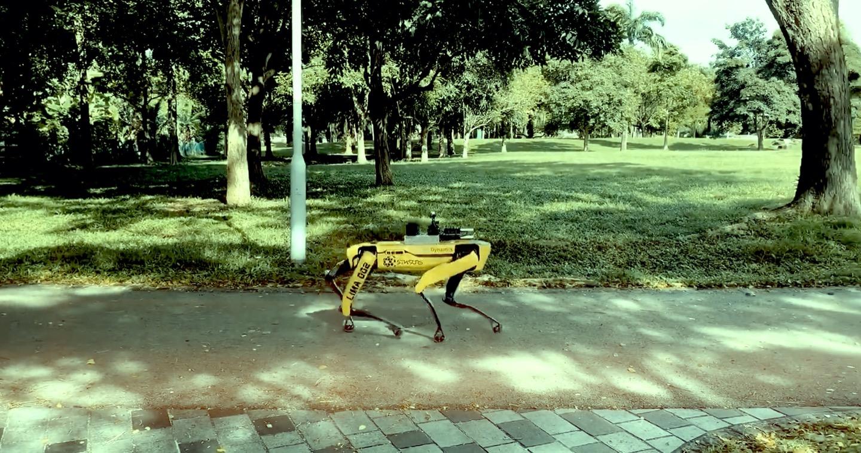 Guarda quanto fa paura questo cane robot che controlla il distanziamento sociale