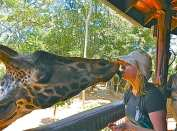 Chelsie Strowbridge with one of her 4 legged African friends. (Note: She has not kissed any frogs.)
