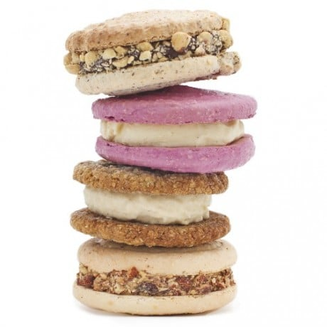 Jeni's Ice Cream Sandwiches
