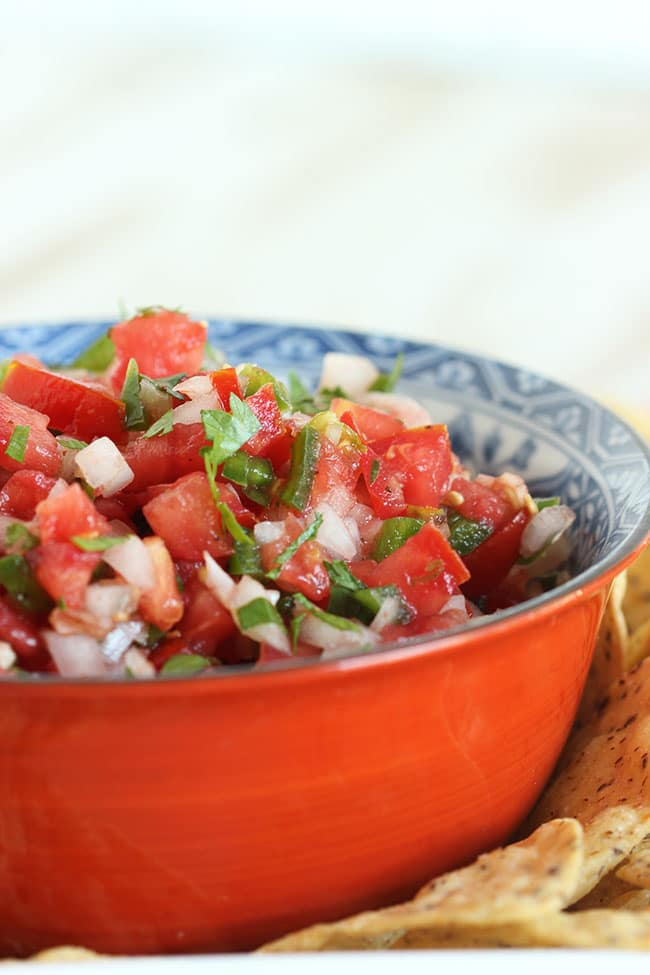 The Very Best Fresh Tomato Salsa | The Suburban Soapbox #bestsalsa