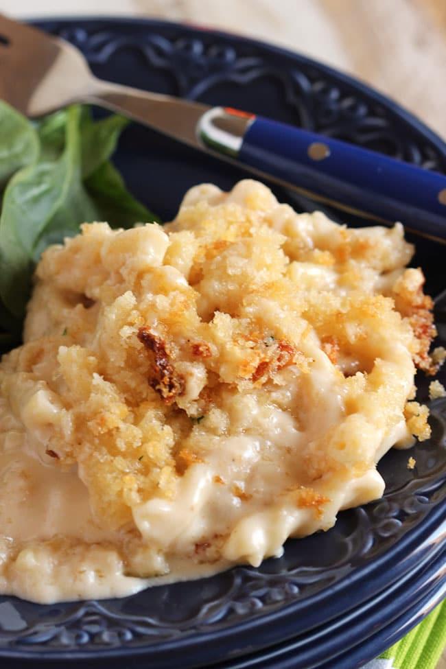 Five Cheese Macaroni and Cheese with Panko Crust | The Suburban Soapbox