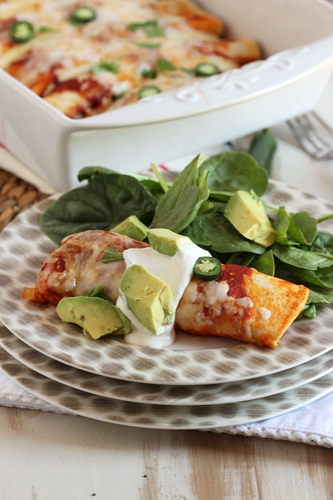 The Very Best Chicken Enchiladas | TheSuburbanSoapbox.com