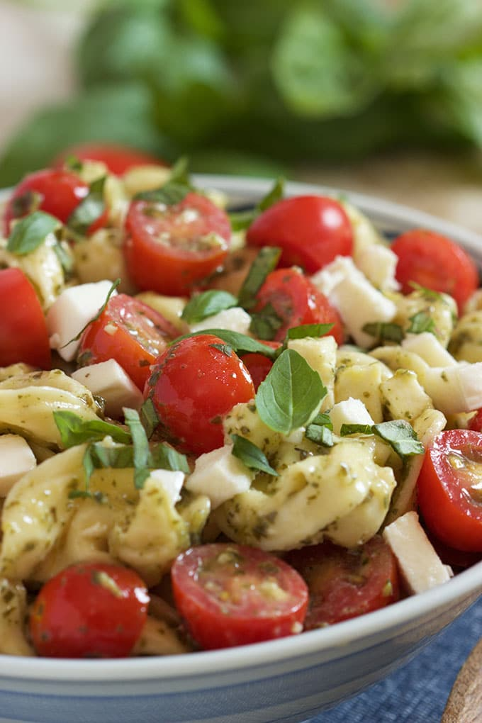 Easy Caprese Tortellini Salad | TheSuburbanSoapbox.com