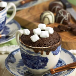 Hot Chocolate Mug Cake Recipe | TheSuburbanSoapbox.com