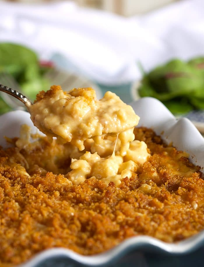 Close up of Baked Cauliflower Mac and Cheese recipe with crispy golden top and a spoonful of Mac and cheese over the dish.