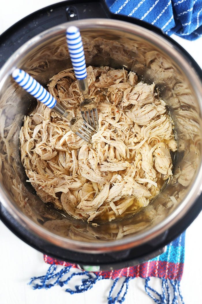 Shredded chicken in the bottom of an Instant Pot with two forks.