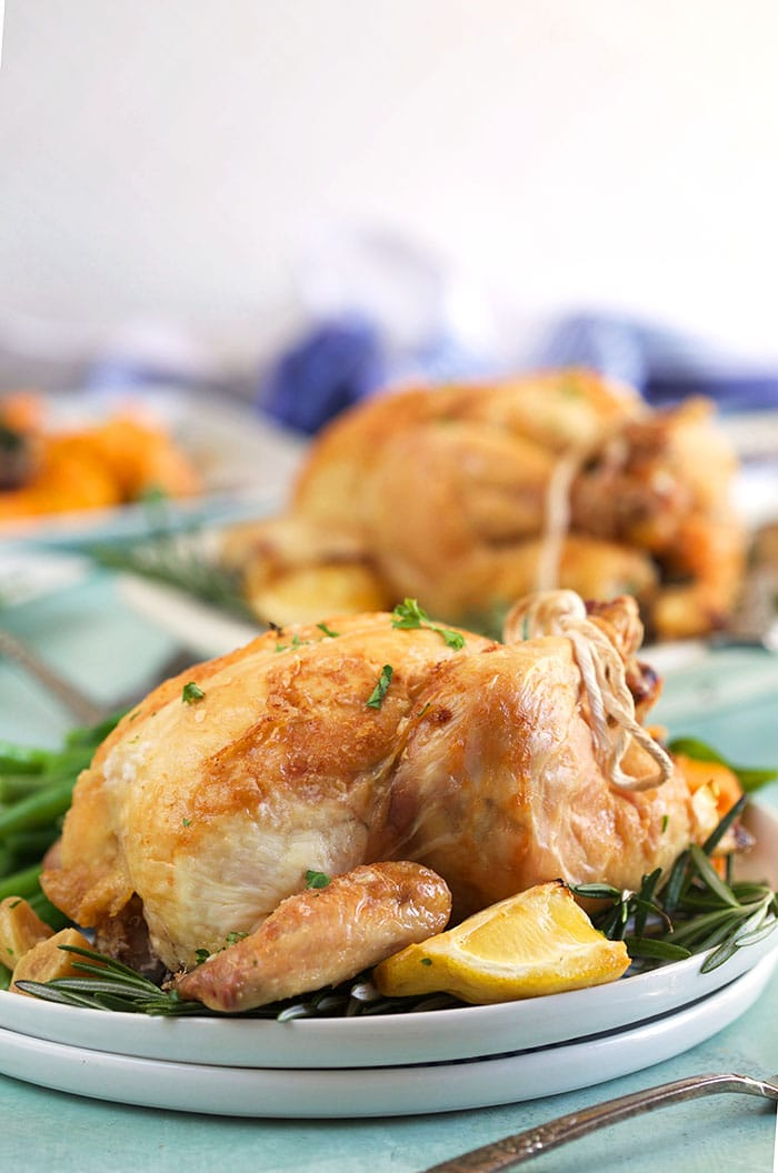 Front facing shot of cornish hen on a white plate.