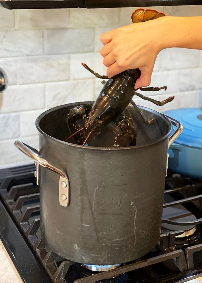 Live lobster being put into a large pot.