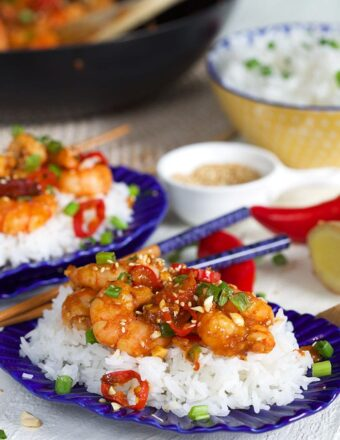 Two plates of rice and shrimp are presented on a table.