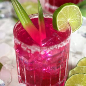 A vibrant pink margarita is in a salt rimmed glass.