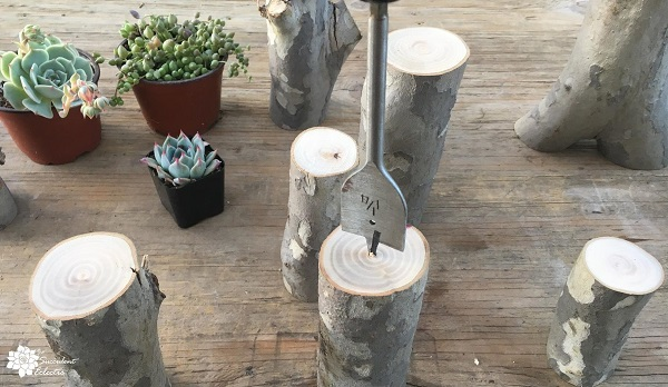 drill tree branches with spade bit to use as planters