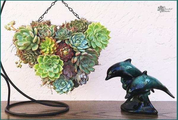 Mothers Day DIY succulent topiary heart closeup