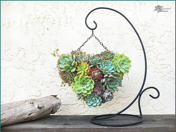 Mothers Day DIY succulent topiary heart outdoors