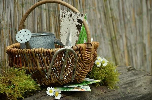 basket of garden tools