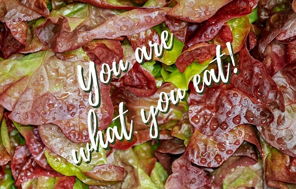 red lead lettuce with caption you are what you eat