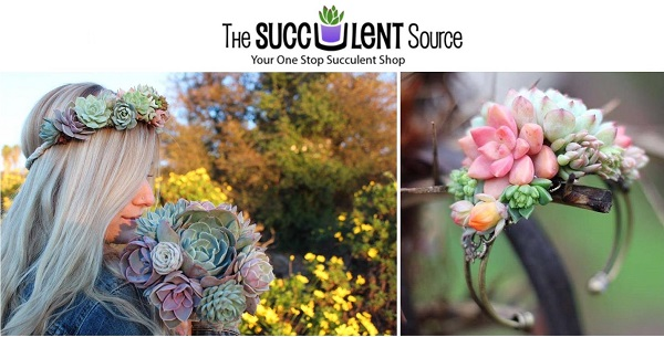 The Succulent Source is an excellent place to buy succulent wedding bouquets and favors