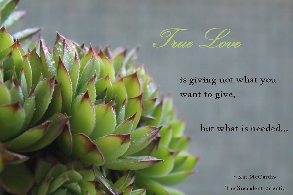 True love is giving not what you want to give but what is needed