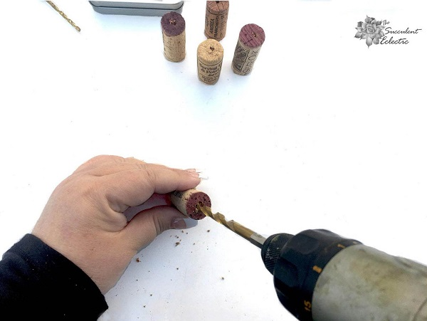 drilling hole in cork for succulent magnets