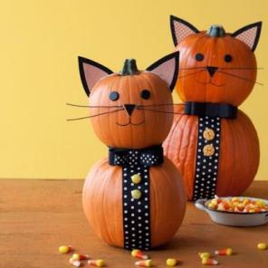 tuxedo cat pumpkins via all you