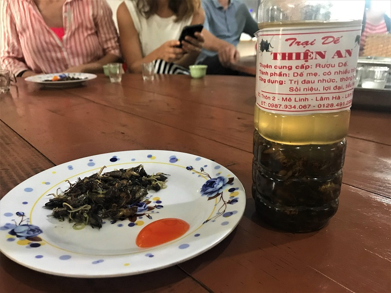 Crickets and cricket wine Budget Breakdown Solo Travel in South Vietnam