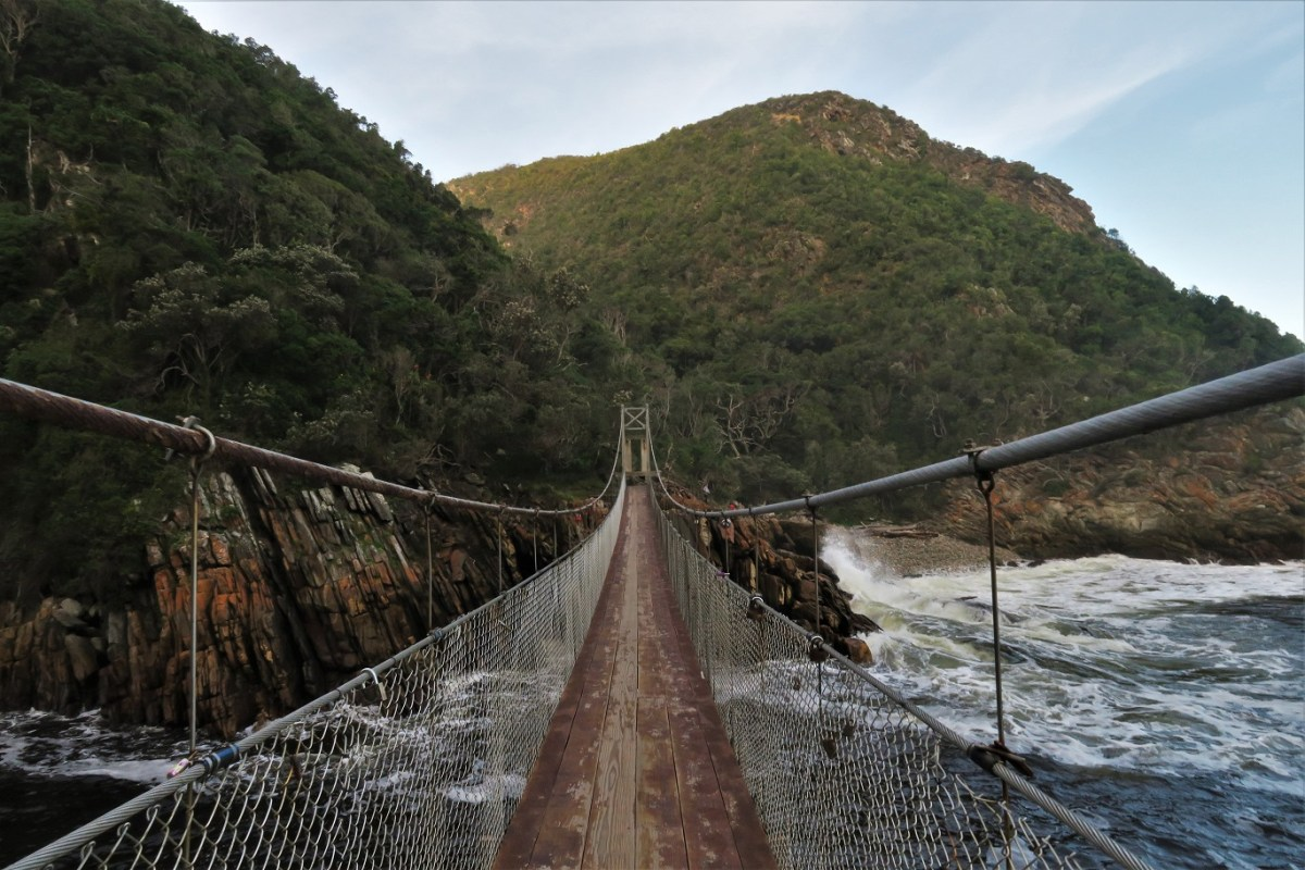 Tsitsikamma-National-Park-Suspension-Bridge-TBudget-Breakdown-The-Cost-of-Solo-Travel-in-South-Africa