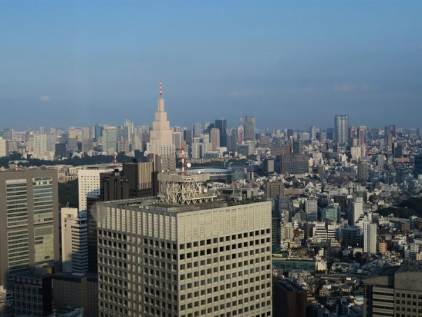 View-from-Tokyo-Metropolitan-Government-Building