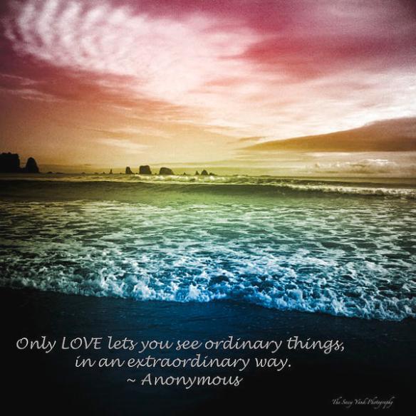 extraordinary-love-cj-the-sassy-yank