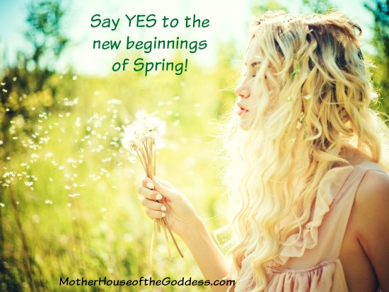 new beginnings love quote