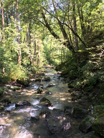 Natur pur, Entspannung am Wasser, ruhe genießen