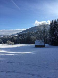 Winterwanderweg, alberschwende, vorarlberg, wandern mit kindern im winter, vorarlberger wanderwege, familienwanderungen
