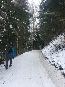 winterwandern und rodeln lustenauer hütte bödele
