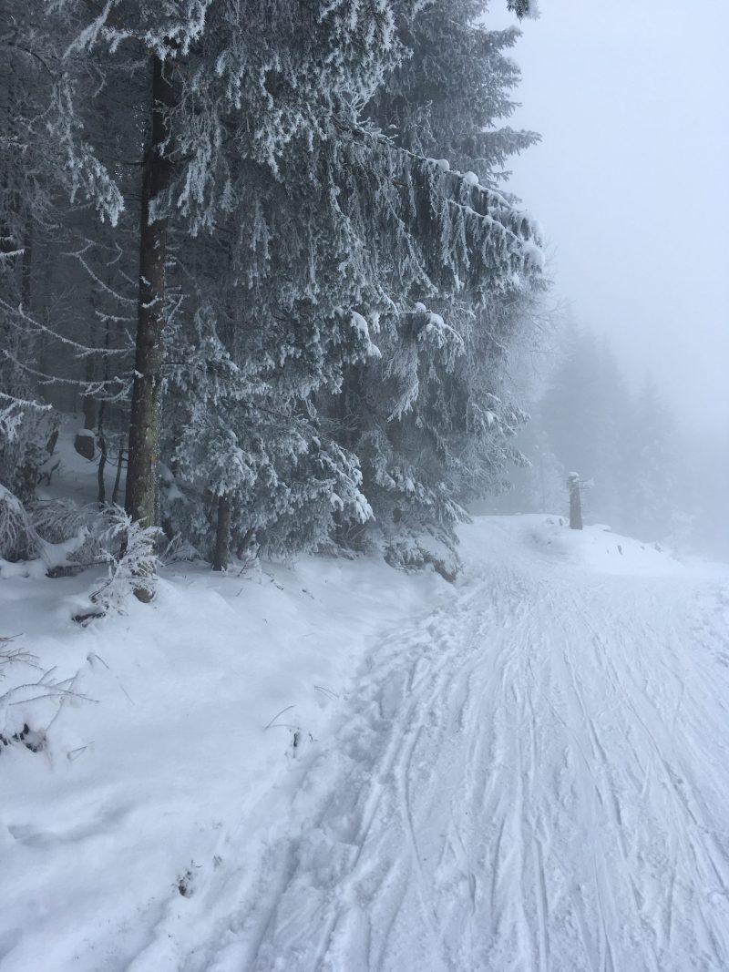 winterwanderweg lustenauerhütte nach schwarzenberg