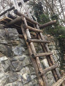Göfis, Wandern mit kindern,Wohin heute, Ruine Sigberg, Burgruinen Österreich
