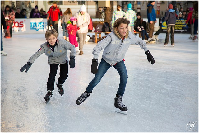 ice-skating-235547_640.jpg