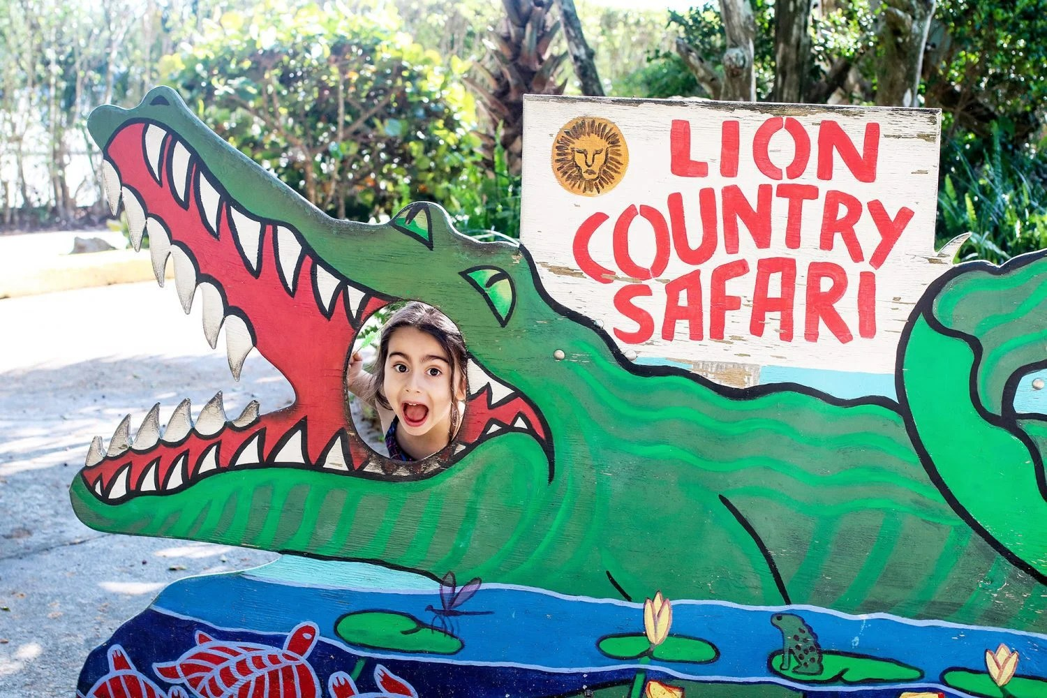 lion country safari, zoo, florida zoo, zoo in florida, safari, drive through safari, florida safari, palm beach, west palm beach, palm beach attraction, palm beach zoo, things to do in west palm beach, top attractions palm beach, things to do with kids in west palm beach, florida tourist attraction, things to do in florida
