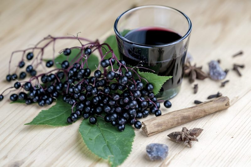 what is an elderberry, elderberries, elderberry, elderberry syrup, cold remedy, flu remedy, health, 2019, cold season kit, surviving cold and flu season, immune boost, teenagers, cold and flu remedies, flu season, mom blog, mom blogger, mommy blog, mommy blogger, family blog, parenting blog, the super mom life, thesupermomlife, parenting blogger, family blogger