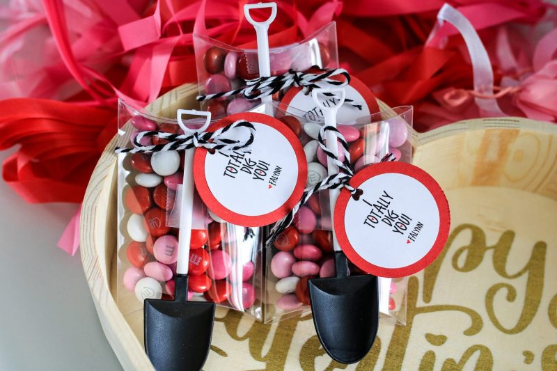 valentines day, valentine, i totally dig you, kids valentine, gift idea, diy, kids craft, crafts for kids, 2019, candy, ideas for valentines day, gifts for kids, i dig you