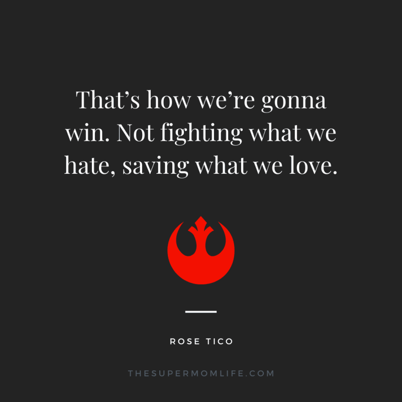 That's how we're gonna win. Not fighting what we hate, saving what we love.