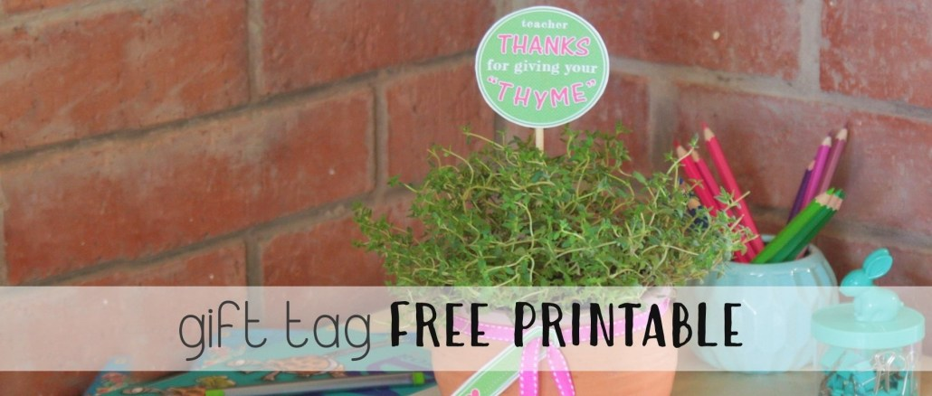 Thanks For Giving Your Thyme Pot Plant Gift thesupermomsclub.com