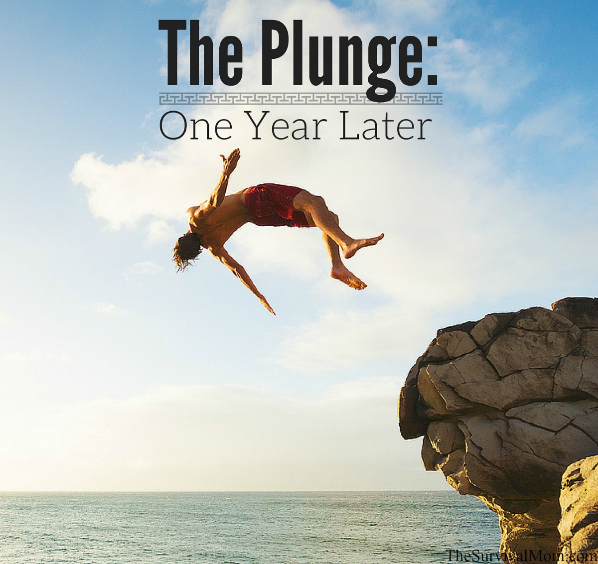 The Plunge: One Year Later via The Survival Mom, no income
