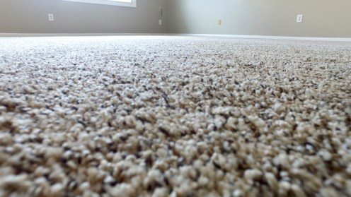 New Carpet!