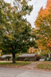 Vogel Delaware Home BCP-1