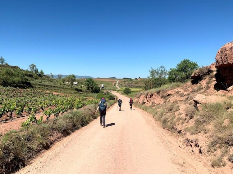Camino De Santiago: Long Hot Days