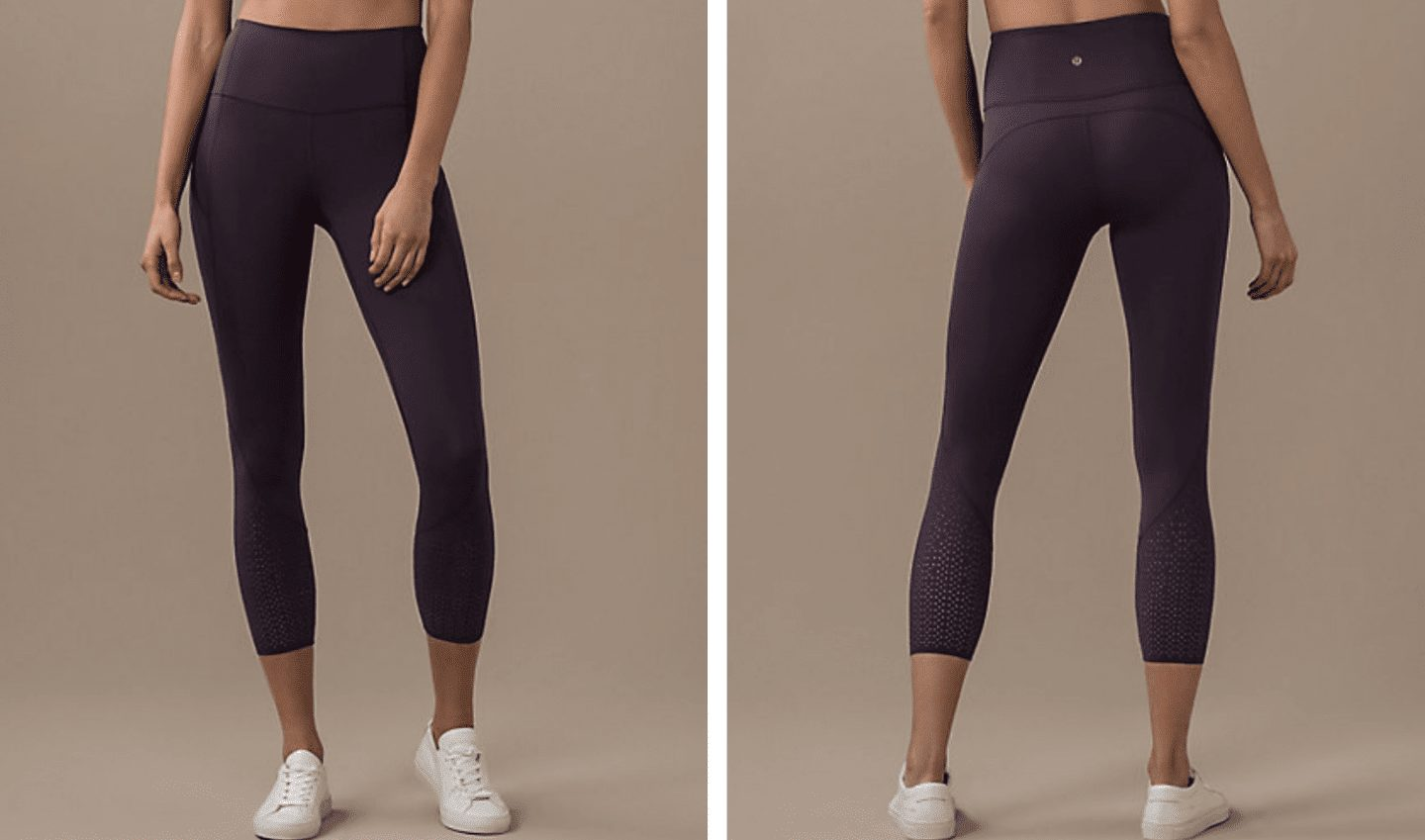 Anew Tight