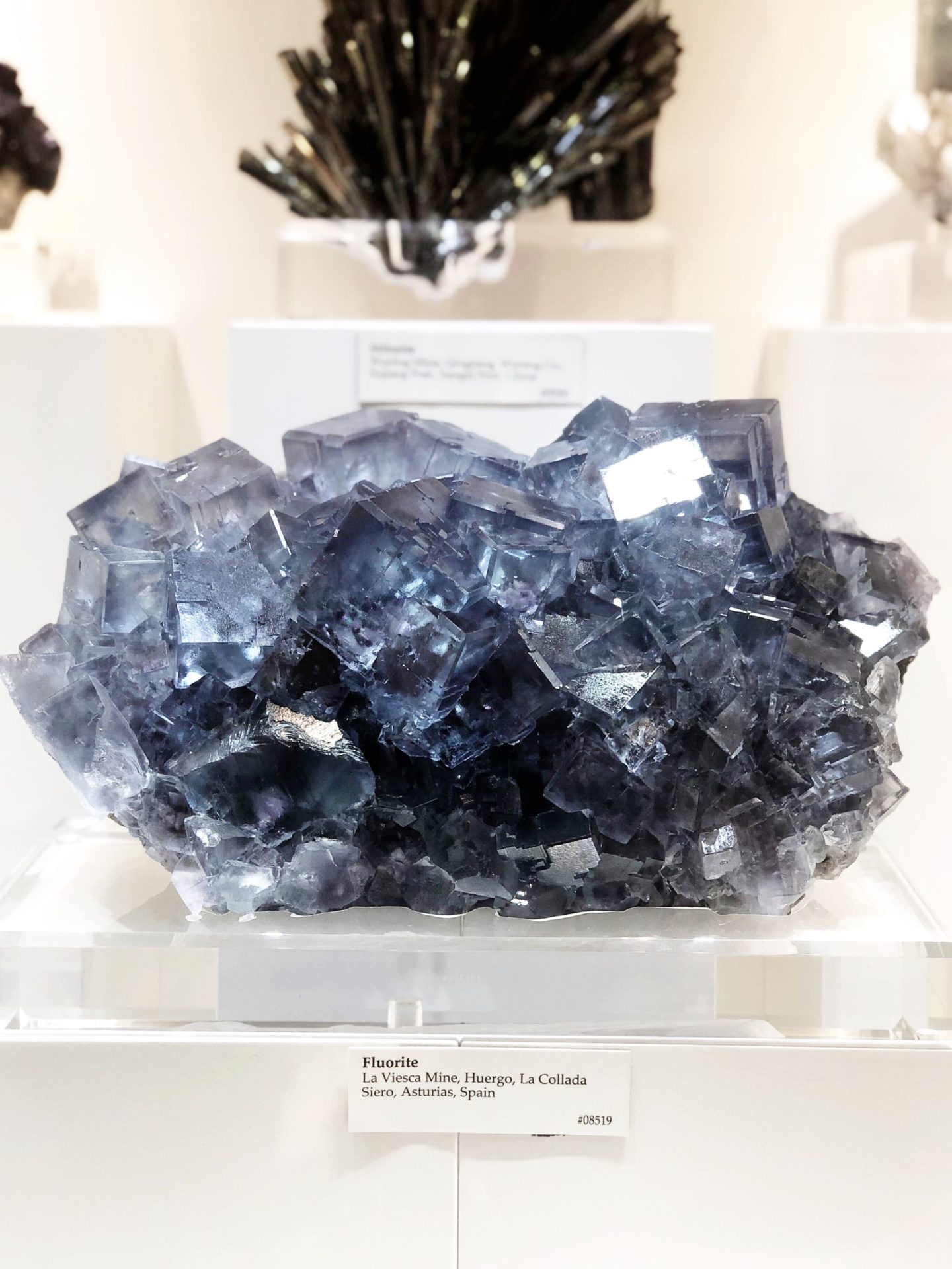Astro West Fine Minerals Galery , Empress Malas Etsy, Mala Bead Bracelets Canada, Mala Bead Bracelet Inspiration, Mala Bead Bracelets Etsy