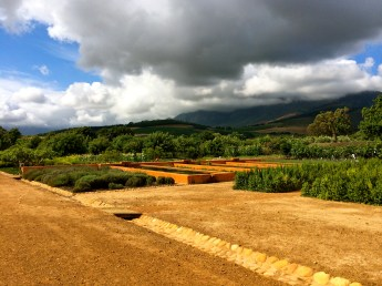 Eight acres of garden stretch out towards the vineyards