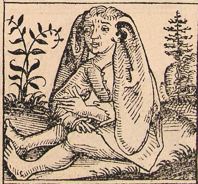 Représentation de Panotéen. Hartmann Schedel (1440-1514), - Chroniques de Nuremberg (Schedel'sche Weltchronik), page XIIr